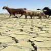 تبدیل شدن چهارمحال و بختیاری به هفتمین استان خشک کشور