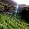 تصاویری ازدیدنی های کبیر کوه ایلام